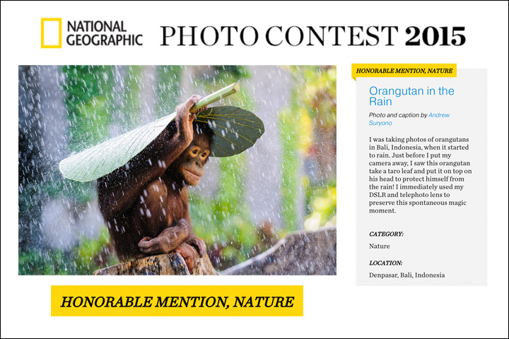 Andrew Suryono 2015 National Geographic Photo Contest Honorable Mention